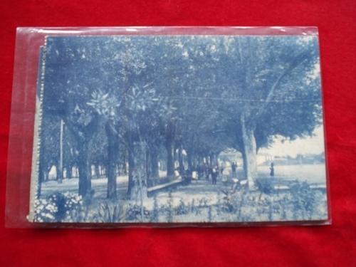 Tarxeta postal: Noia (Noya) - Alameda.  1920