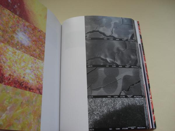 Impresión piezoeléctrica. La estampa inyectada (algunas reflexiones en torno a la gráfica digital)