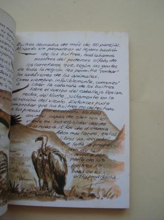 Los buitres. Cuadernos de campo, nº 10