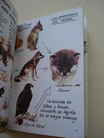 El zorro. Cuadernos de campo, nº 11