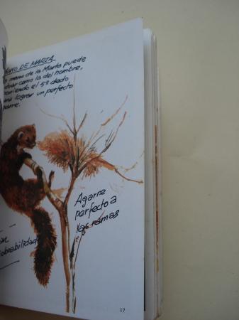 Pequeños carnívoros (I). Cuadernos de campo, nº 13