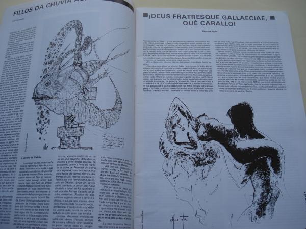 LUZES DE GALIZA. Números 16-17. Primavera 1991. A paisaxe do desastre