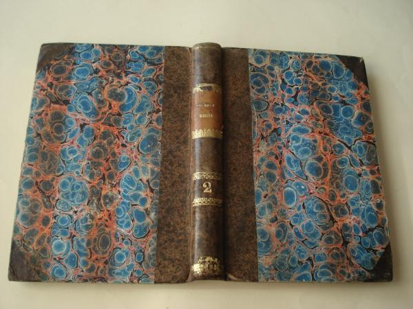 Galería regia o Biografías de los reyes de España desde el primero de los godos hasta Isabel II. Tomo II