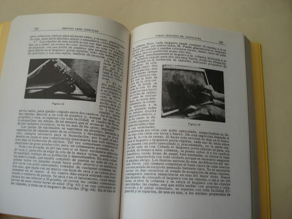 Curso Práctico de Apicultura. Cuadernos da Área de Ciencias Agrarias, 2 (Texto en castellano)