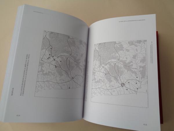 El final de la antigüedad en la Gallaecia. La transformación de las estructuras de poblamiento entre Miño y Duero (Siglos V al X)