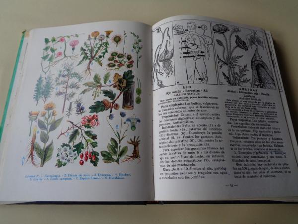 Plantas medicinales. Las enfermedades y su tratamiento por las plantas con 300 recetas originales