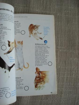 Guías de la naturaleza. Gatos
