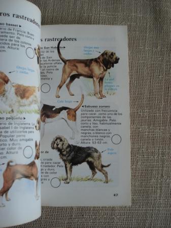 Guías de la naturaleza. Perros