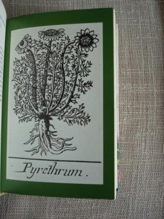 Nuestras amigas las plantas III. Enciclopedia de las plantas