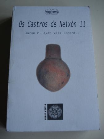 Os Castros de Neixón II (Galicia)