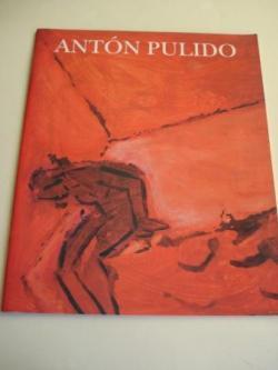Ver os detalles de:  ANTÓN PULIDO. Catálogo Exposición Galería Severo Pardo, Vigo, 1992