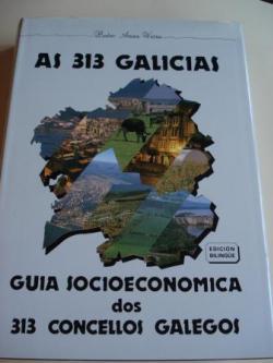 Ver os detalles de:  As 313 Galicias. Guía socioeconómica dos 313 concellos galegos (Edición bilingüe galego-español)