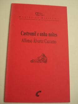 Ver os detalles de:  Castromil e unha noites. Contos do Castromil, nº 20