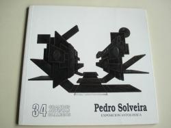 Ver os detalles de:  PEDRO SOLVEIRA. Exposición antológica. Catálogo Exposición Vigo, 1996. Grandes Artistas Gallegos, nº 34