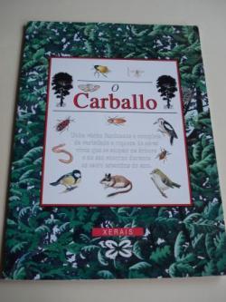 Ver os detalles de:  O Carballo. Despregable de 292 cm x 25 cm en carpeta ilustrada. Versión galega de M. Castro / L. Freire