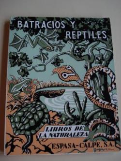 Ver os detalles de:  Batracios y reptiles