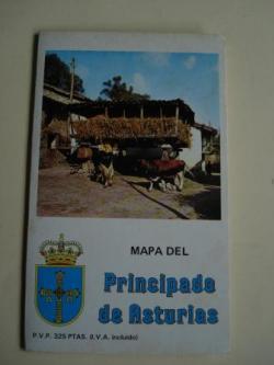 Ver os detalles de:  Mapa del Principado de Asturias. Desplegable de gran tamaño con nomenclator
