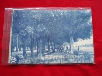 Tarxeta postal: Noia (Noya) - Alameda.  1920 - Ver los detalles del producto
