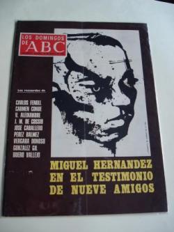 Ver os detalles de:  90:08 Artistas galegos do século XXI. Idiomas galego, castellano, portugués , english