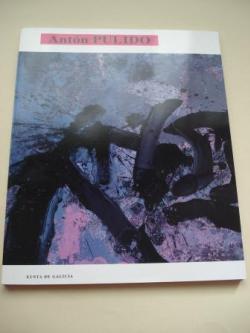 Ver os detalles de:  ANTÓN PULIDO. Catálogo Exposición Casa da Parra, Santiago de Compostela, 1991