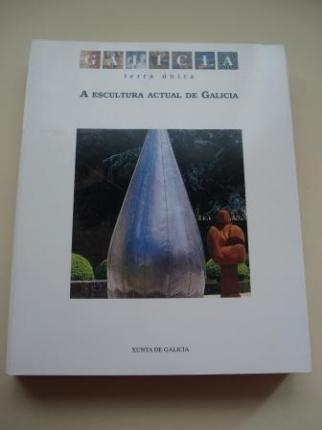 A Escultura Actual de Galicia (Textos en galego - español) - Ver os detalles do produto