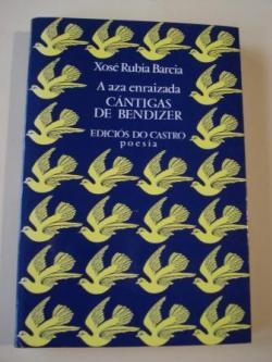 Ver os detalles de:  Cántigas de Bendizer (Edición bilingüe galego-castellano)