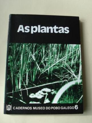 As plantas. Cuadernos do Museo do Pobo Galego, nº 6 - Ver os detalles do produto