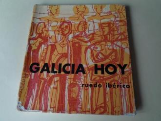 Galicia hoxe (Ruedo Ibérico, 1966) - Ver os detalles do produto