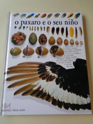 O paxaro e o seu niño - Ver os detalles do produto