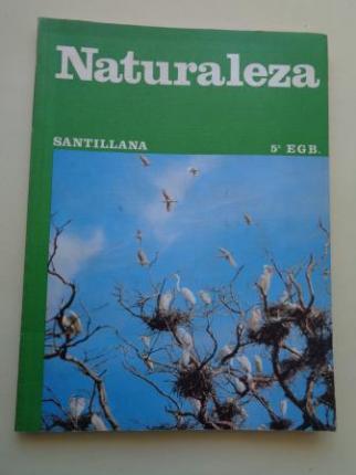 Naturaleza 5º EGB (Santillana, 1979) - Ver os detalles do produto