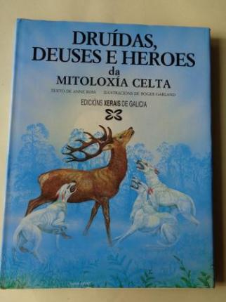 Druídas, deuses e heroes da mitoloxía celta - Ver os detalles do produto