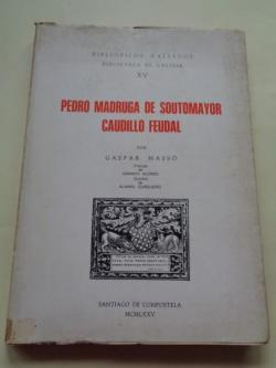 Ver os detalles de:  Pedro Madruga de Soutomayor, caudillo feudal