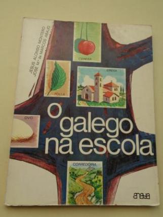 O galego na escola (Textos das explicacións en castelán) - Ver los detalles del producto