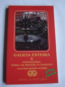 Ver os detalles de:  Galicia enteira 6. Pontevedra - Terra de Montes - O Condado. 4ª edición actualizada
