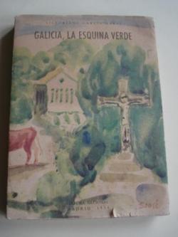 Ver os detalles de:  Galicia, la esquina verde