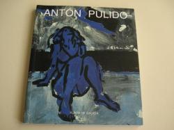 Ver os detalles de:  Antón Pulido. Catálogo Exposición Casa da Parra (Santiago de Compostela). Novembro-decembro, 2001