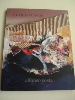 Ver os detalles de:  ALFONSO COSTA: CYPERUS PAPYRUS. Catálogo da Exposición na Fundación Museo de Artes (A Coruña).