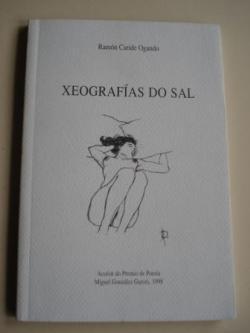 Ver os detalles de:  Xeografías do sal (Accésit do Premio de Poesía Miguel González Garcés, 1998)