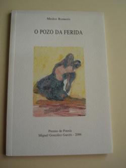 Ver os detalles de:  O pozo da ferida. Premio de Poesía Miguel González Garcés, 2006