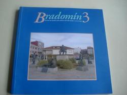 Ver os detalles de:  Bradomín 3 - Revista de estudios sobre Ramón del Valle-Inclán e o seu tempo