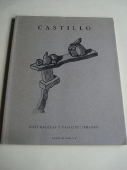 Ver os detalles de:  JORGE CASTILLO. Naturalezas y paisajes urbanos. Catálogo Exposición, Universidad Católica de Chile, Marzo 1994